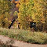 Meadows Trail