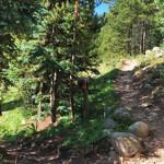 Midway Creek Trail