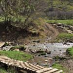 Prince Creek