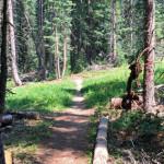Sierra Club Trail