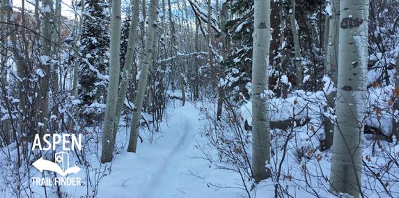 Tom Blake Trail