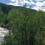 Wheeler Ditch Trail