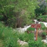 Mitchell Creek Trail