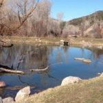 Old Pond Park