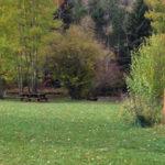 Stein Park