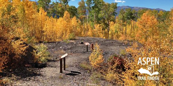 Bushwacker Mine