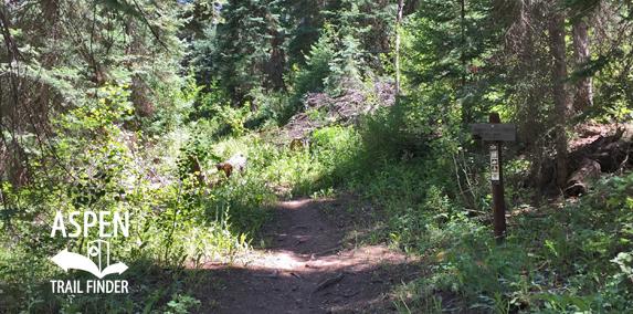 Cattle Creek Trail