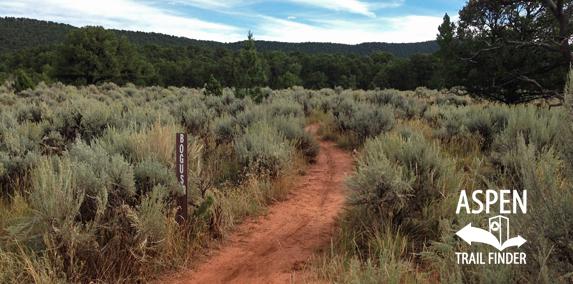 Bogus Trail