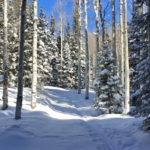 Babbish Express Trail