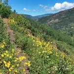 Raspberry Creek Trail