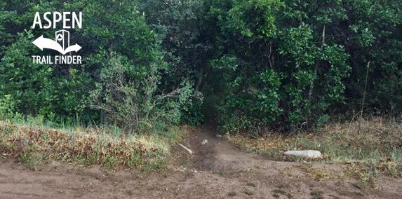 English Trim Trail