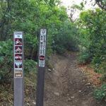 Skill Saw Trail