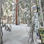 Aspen Ski Hall of Fame Shrine