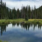 Silver Dollar Pond