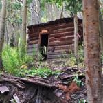 Bill Zaugg's Cabin
