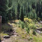 Chapman Gulch Trail
