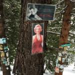 Aspen Shrines