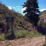 Mascotte 99 Trail