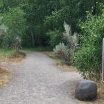 Squirrel Trail