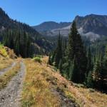 Cooper Creek Road