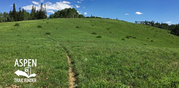 Van Horn Lookout Trail