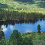 Chapman Reservoir