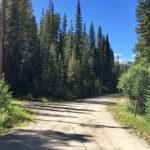 Chapman Gulch Road (FSR #504E)