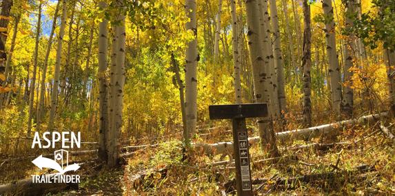 Fall Colors in Basalt