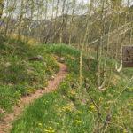 West Maroon Portal Trail