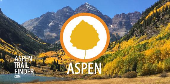 Fall Colors in Aspen